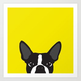 Boston Terrier Yellow Art Print