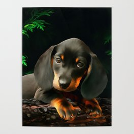 A Dachshund Puppy. (Painting) Poster