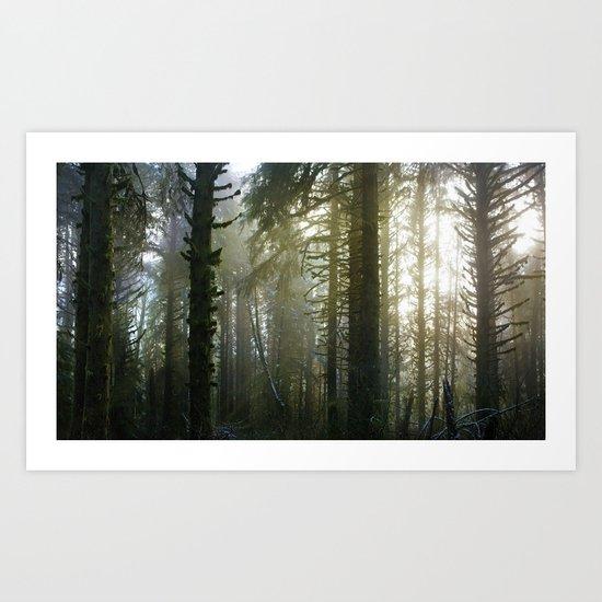 Foggy Forest #evergreen Art Print
