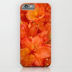 Give me an Orange, Julius iPhone 6s Slim Case