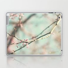 spring #3 (cool bleu) Laptop & iPad Skin