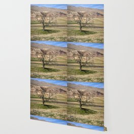 Moorland Tree Wallpaper