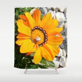 Bright Orange Gazania Flower with Snail Shower Curtain