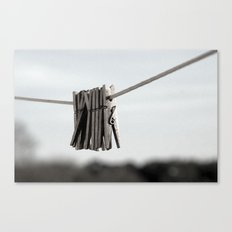 In a pinch Canvas Print