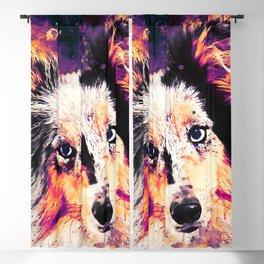 border collie dog 5 portrait wslsh Blackout Curtain
