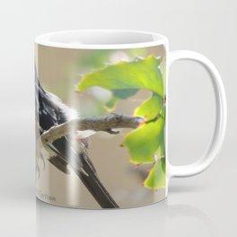 Spotted Towhee Scopes the Oak Grove Coffee Mug