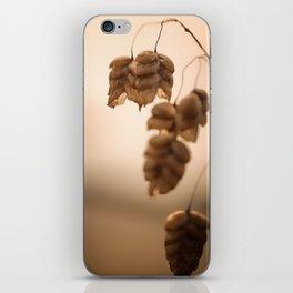 Rattlesnake Grass iPhone Skin