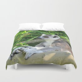 Cute and relaxed Ring-tailed lemur (lemur catta) Duvet Cover