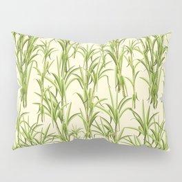 Sugar Cane Exotic Plant Pattern Pillow Sham