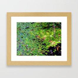 Lonely frog Framed Art Print