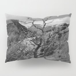 Withered Tree on top of Mountain Range, Big Bend - Landscape Photography Pillow Sham
