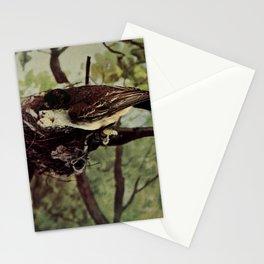Neltje Blanchan - Bird Neighbours (1903) - Kingbird Stationery Cards