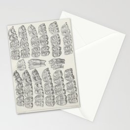 Vintage Print - American bisons, living and extinct (1876) - American Bison & Cattle Teeth Stationery Cards