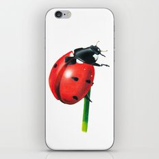 Ladybug | Colored pencil drawing iPhone & iPod Skin
