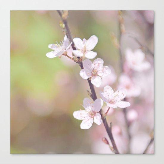 Fairytale Cherry Blossom Canvas Print