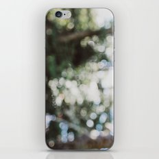 Warm Summer Day iPhone & iPod Skin
