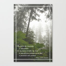Perennial and Constant Canvas Print