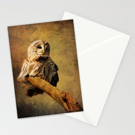 From above I see Stationery Cards