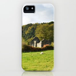 Field of Sheep Ireland iPhone Case