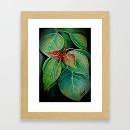 Study in Contrast Framed Art Print