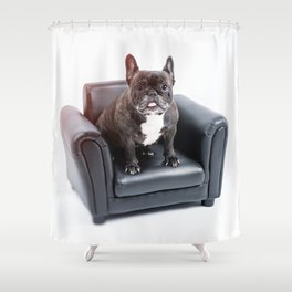 French bulldog portrait Shower Curtain