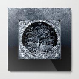 SwanCurios 04 Metal Print