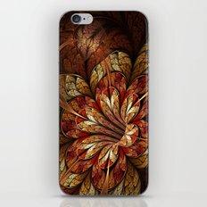 Autumn Glory iPhone & iPod Skin