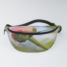 Pink peony buds Fanny Pack