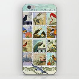 Birds of a Feather Postal Collage iPhone Skin