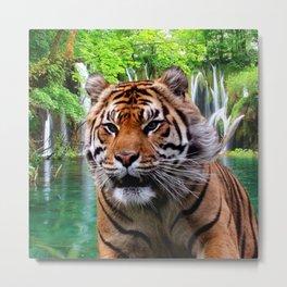 Tiger and Waterfall Metal Print