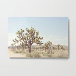 Joshua Tree Cactus - Desert Landscape Photography Metal Print