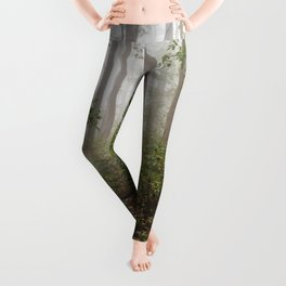 Smoky Mountain Forest Adventure III - National Park Nature Photography Leggings