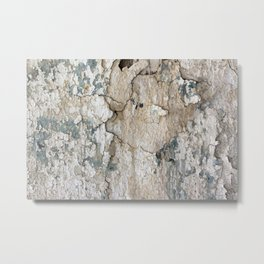 White Decay IV Metal Print