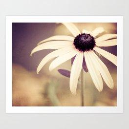 Daisy Flower Photography, Burgundy Cream Beige Brown, Neutral Floral Nature Daisies Photo Art Print