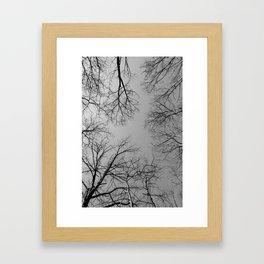 Dead Trees Framed Art Print