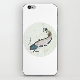 wels catfish iPhone Skin