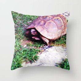 Ferrara Tartaruga Throw Pillow
