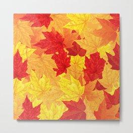 Autumn maple leaves Metal Print