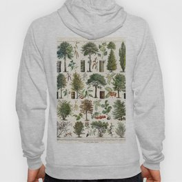 Adolphe Millot - Arbres B - French vintage botanical poster Hoody