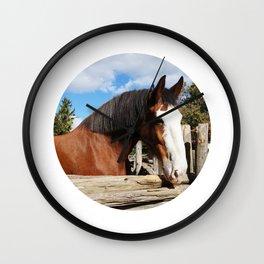 We #LOVE Animals - Horse Wall Clock