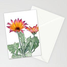 African Daisy 'Spun Sugar' Stationery Cards