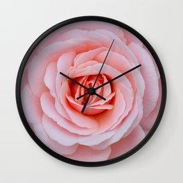 Pink rose beauty Wall Clock