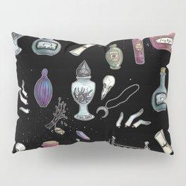 Witches' Stash Pillow Sham