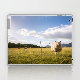 Sheep grazing Lake District, England Laptop & iPad Skin