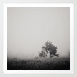 the fog ... Art Print