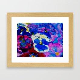 Pansy Carpet Framed Art Print