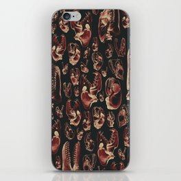 Carnivore RED MEAT / Animal skull illustrations from the top of the food chain iPhone Skin