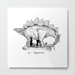 Figure One: Stegosaurus Metal Print