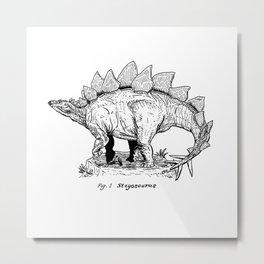 Figure One: Stegosaurus Metal Print