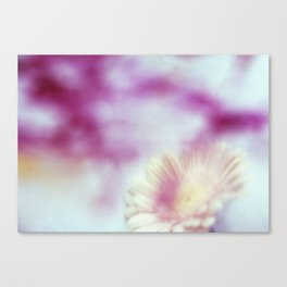 Coloured Memories Canvas Print